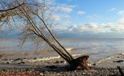 Lake Michigan, January, 2019, by Elizabeth G Fagan, lakemichigansleftcoast.com, Lake Michigans Left Coast