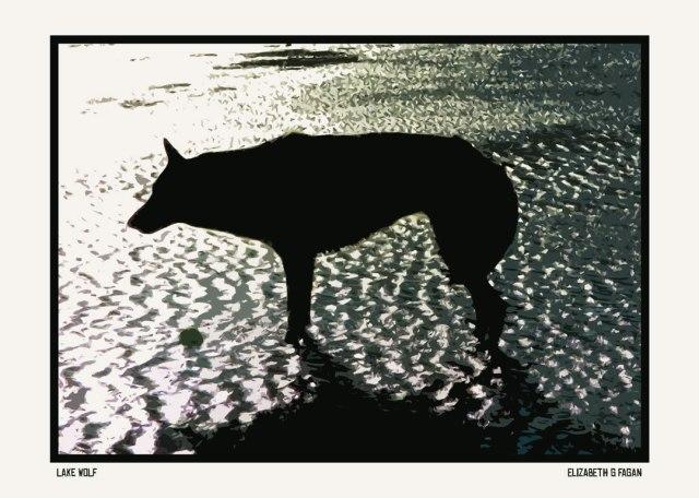 Lake Wolf © Elizabeth G Fagan, lakemichigansleftcoast.com, Lake Michigan's Left Coast