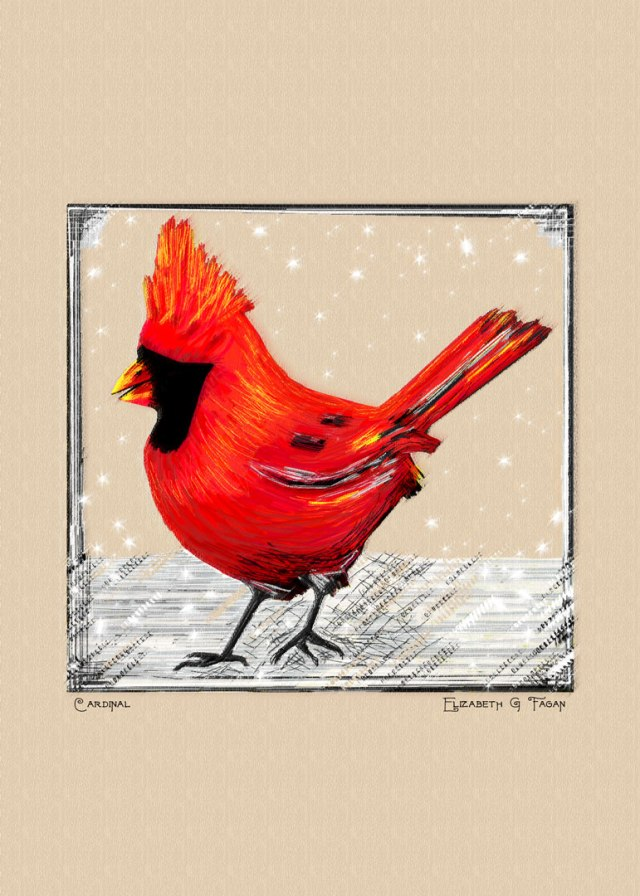 Cardinal © Elizabeth G Fagan, lakemichigansleftcoast.com, Lake Michigan's Left Coast