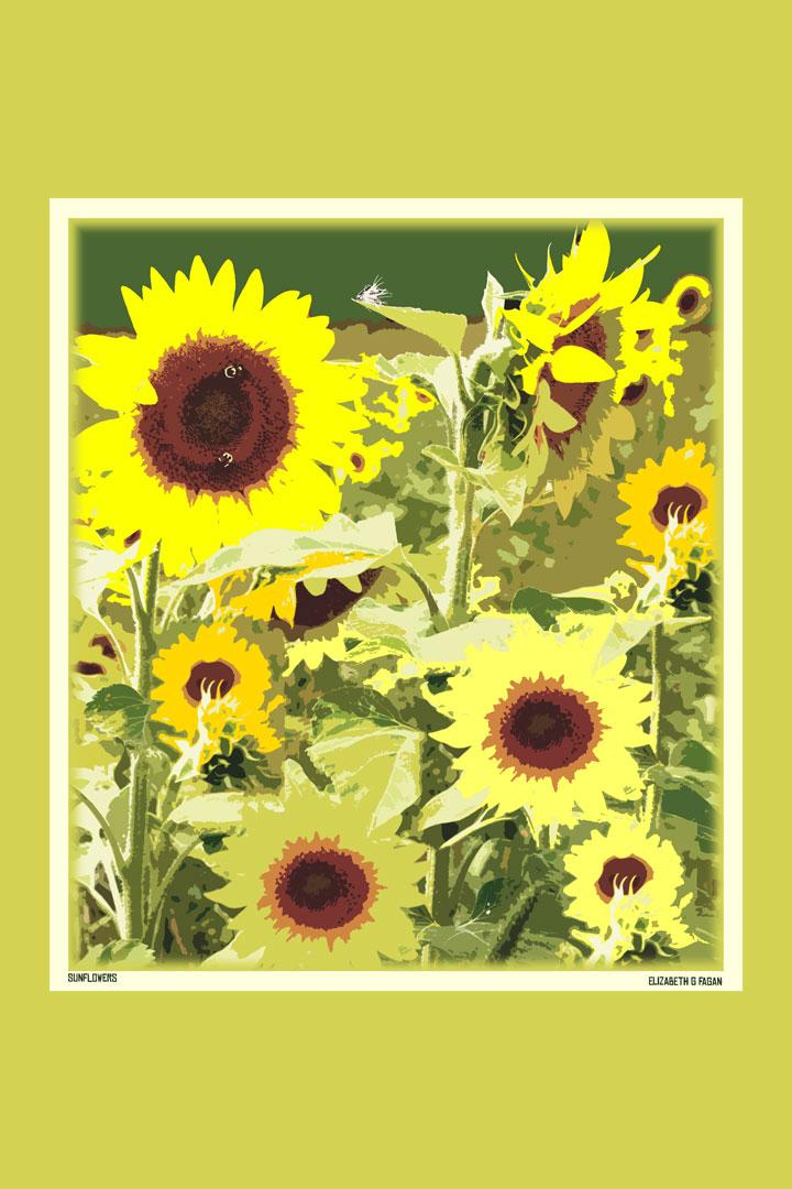 Sunflowers © Elizabeth G Fagan, lakemichigansleftcoast.com, Lake Michigan's Left Coast